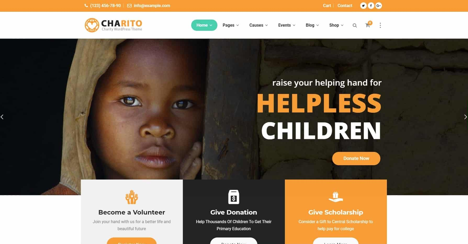Fundraising Example Website