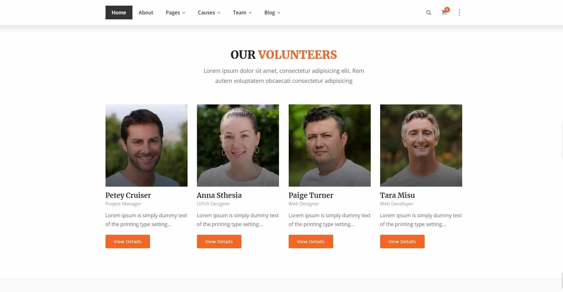 Example Website for Volunteers
