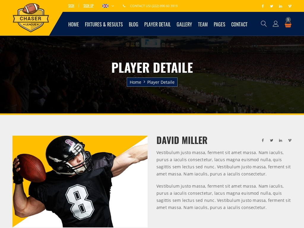 Football Sports Website Design Services