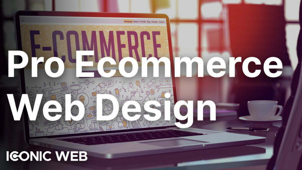 Professional Ecommerce Web Design